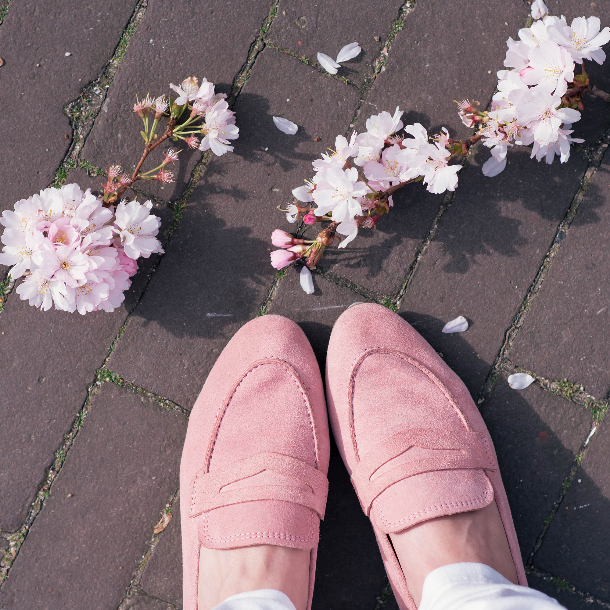 first-blossoms-thepetitecat-pink-loafers